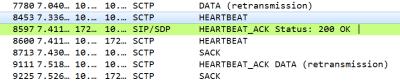 SCTP Heartbeats